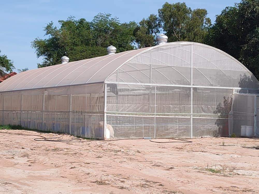 Green House Together Project RSSO